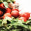 The Cancer-Fighting Properties in Cruciferous Vegetables