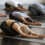 Yin Yoga for Deep Relaxation and Mental Clarity
